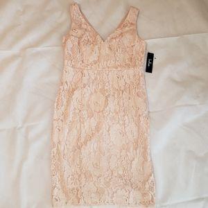 Normani Blush Lace Sleeveless Dress